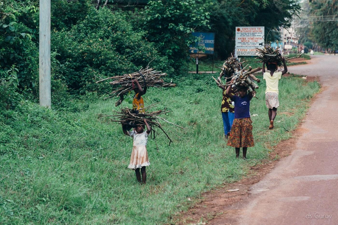 кения диани бич