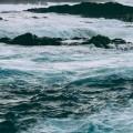 Новое видео: ALMACIGA, TENERIFE NORTE
