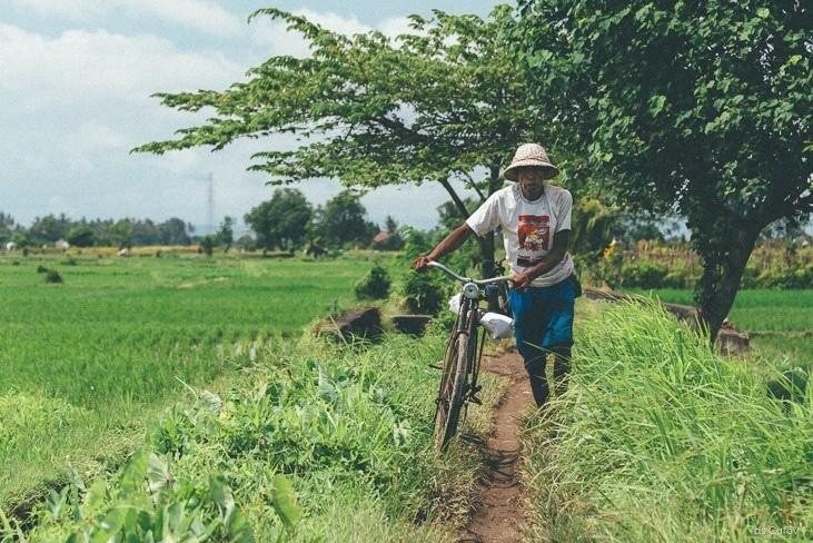 велосипедист на бали