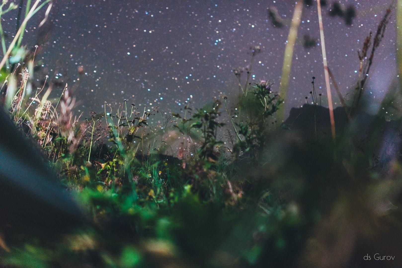 звёзды ночью над красной поляной