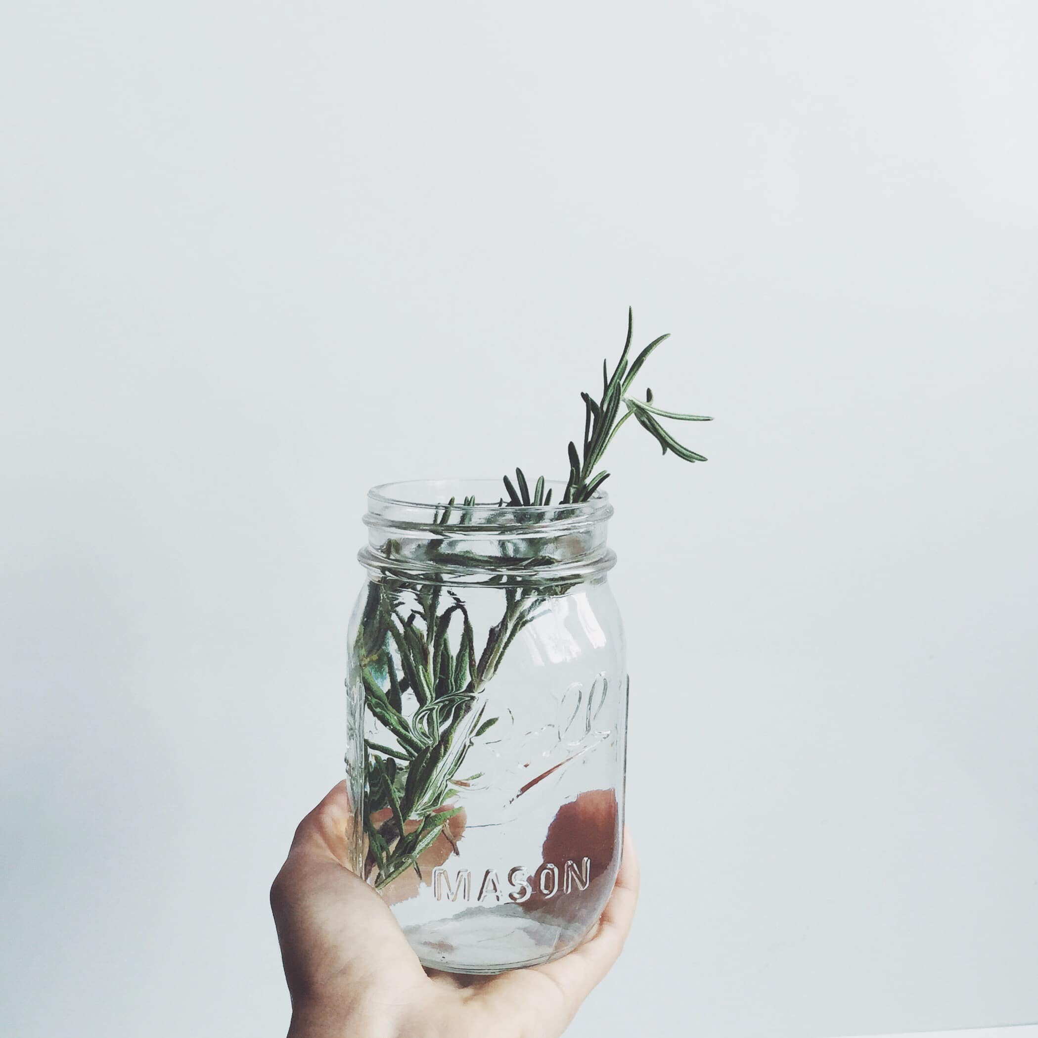 green lifetyle blog by anastasia gurova