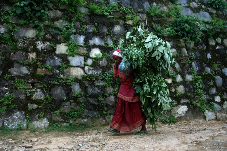 pokhara-walks30